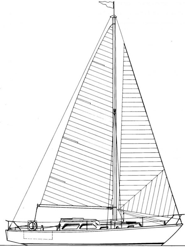 Zeichnung Delphin-001b
