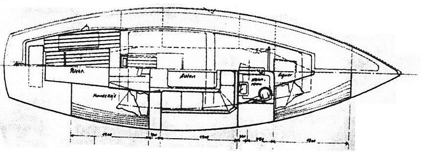 Zeichnung Delphin-003